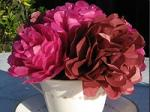 Rose Tissue Paper Flower Craft