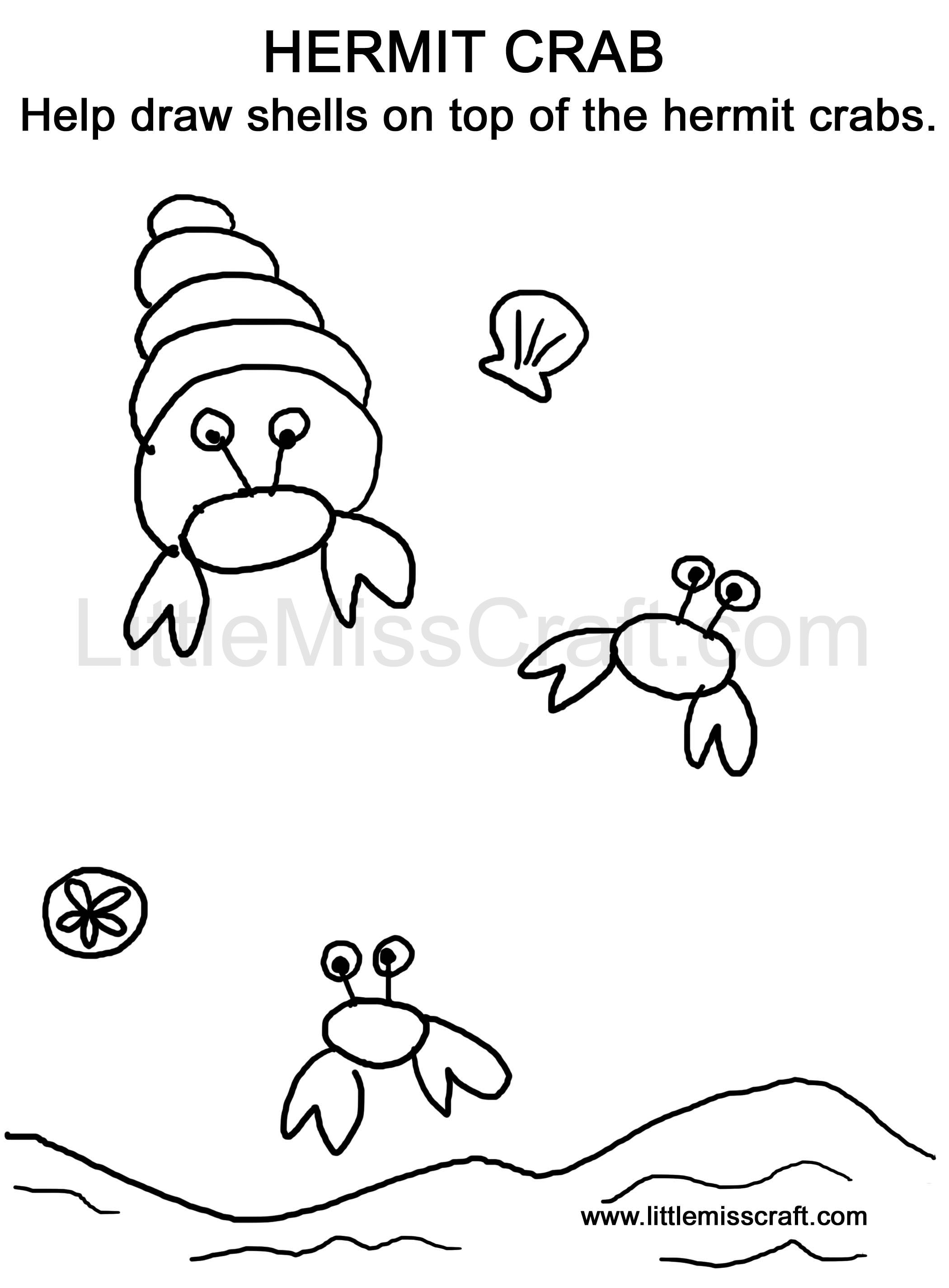 Hermit Crab Drawing Sea Creatures Hermit Crab