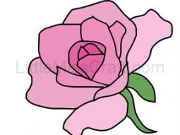 Rose Coloring Page 1