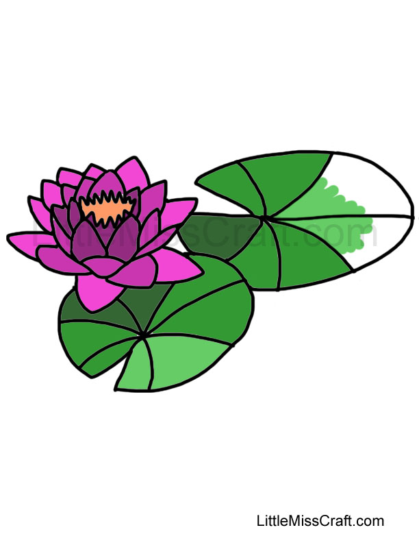 water lily coloring page 2 - Lily Coloring Pages