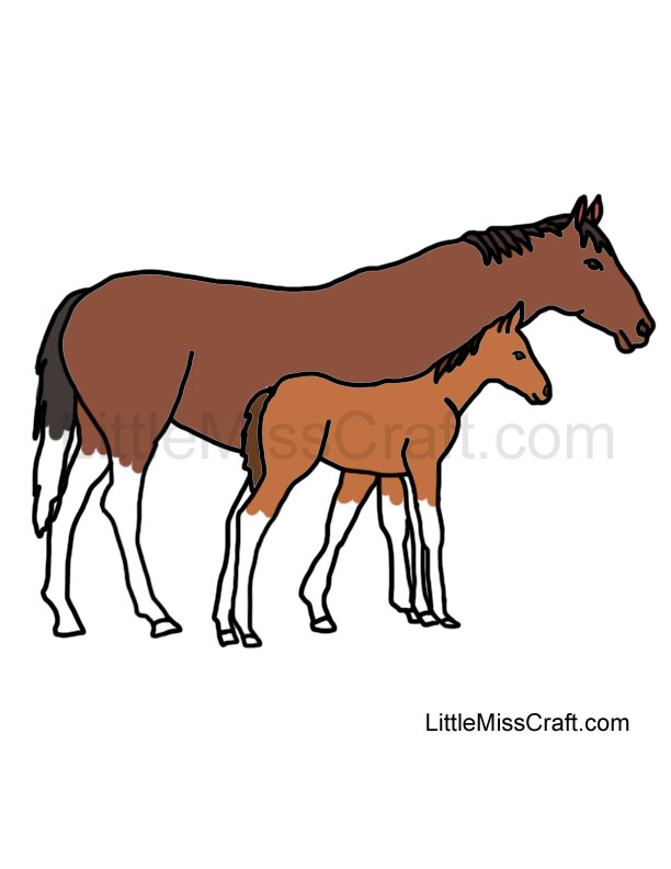 baby horse coloring pages - baby horse coloring pages to print