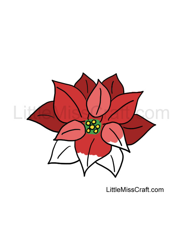 poinsettia coloring page