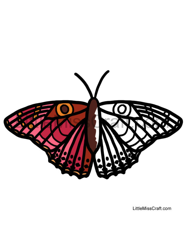 coloring pages painted lady butterfly - photo#25