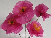 Tissue Paper Poppies Craft