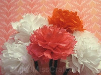 Carnation Tissue Paper Flower Craft