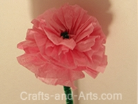 Ranunculus Tissue Paper Flower Craft